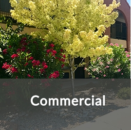 commercial Landscaping Services to Increase the Value of Your Property